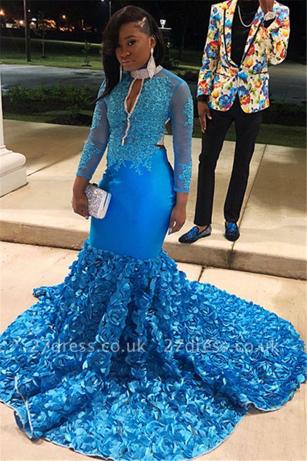 Simple Blue Sheer Tulle Long Sleeves Floral Lace Applique Elegant Trumpt Prom Dress UKes UK UK
