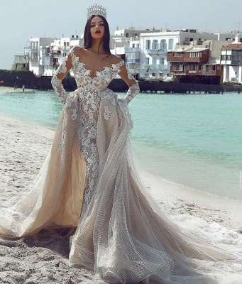 Sexy Sexy V-Neck Long Sleeves Tulle Applique Bridal Gowns with Overskirt_3