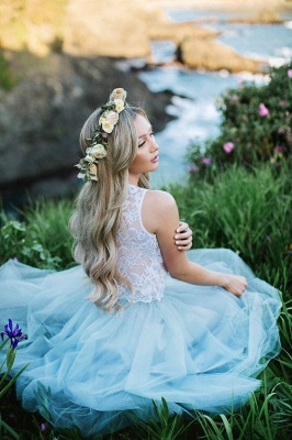 Smoky Blue Fluffy Tulle Chic Lace Party Dresses | Sleeveless Cheap Short Evening Dress_2