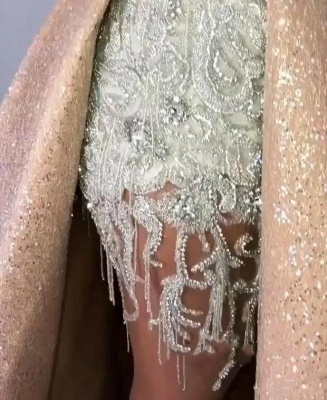 Sleeveless Lace Appliques Mermaid Prom Gowns with Sweep Train_4
