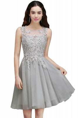 Silver Tulle Short A-Line Sleeveless Appliques Homecoming Dress UK_3