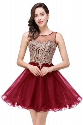 Sleeveless Appliques Elegant Black Tulle Homecoming Dress UK_1