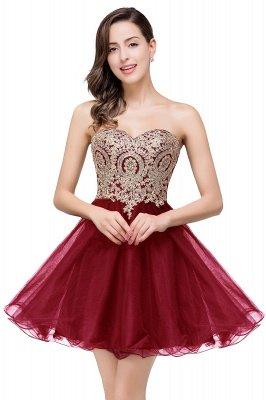 Gabriela   A Line Lace Appliques Sweetheart Short Prom Dresses_1