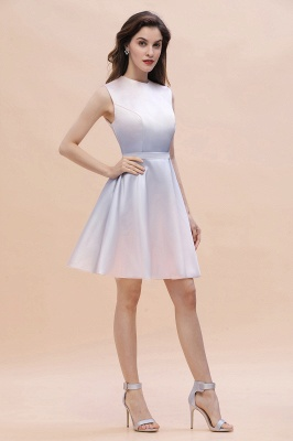 Gradient Mini Daily Wear Dress Crew Neck Sleeveless A-line Evening Party Dress_5