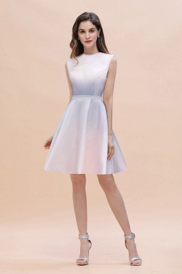 Gradient Mini Daily Wear Dress Crew Neck Sleeveless A-line Evening Party Dress_2