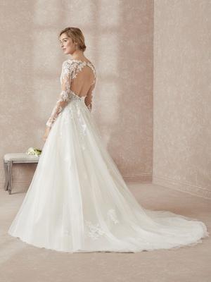 Elegant V-Neck Long Sleeve Wedding Dress A-line Lace Appliques Bridal Gowns_2