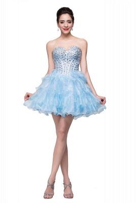 Glamroous Sweetheart Crystal Homecoming Dress UK Organza_5