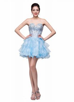Glamroous Sweetheart Crystal Homecoming Dress UK Organza_4