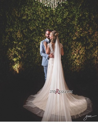 Lace tulle wedding dress, princess bridal gowns_1