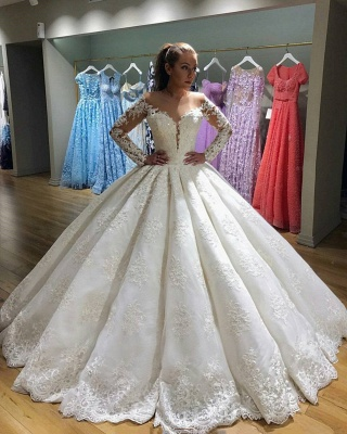 Gorgeous Long Sleeve Wedding Dress   Lace Ball Gown Bridal Gowns_3