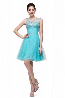 Classic Sleeveless Tulle Short Homecoming Dress UK With Crystals_3