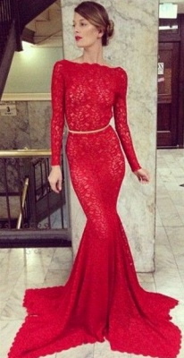 Backless Lace Mermaid Prom Dress UKes UK Bateau High Neck Long Sleeve Sheer Sexy Party Gowns with Court Train_1