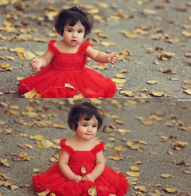 Lovely Red Tulle  Flower Girls Tutu Dress UK Online_1