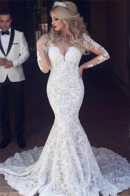 Long Sleeve  Sexy Mermaid Lace Wedding Dress Open Back V-neck Classic Bridal Gown_1