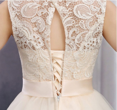Timeless Sleeveless Lace Cocktail Dress UK Bowknot Tulle Short Prom Gowns_2