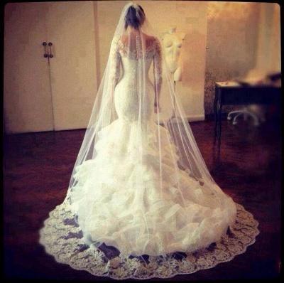 Amazing Long Sleeve Lace Wedding Dress Sexy Mermaid Organza_5