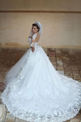 Gorgeous Long Sleeve Appliques Tulle Wedding Dress Hi-Lo With Train_1