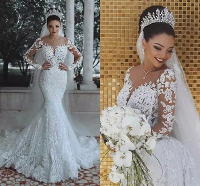 Elegant Long Sleeve Lace Wedding Dress | 2019 Sexy Mermaid Bridal Gowns On Sale_4