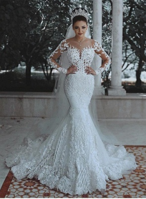 Elegant Long Sleeve Lace Wedding Dress | 2019 Sexy Mermaid Bridal Gowns On Sale_1