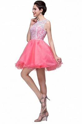 Lovely Sleeveless Lace Homecoming Dress UK Short_3