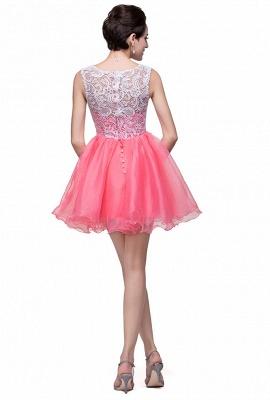 Lovely Sleeveless Lace Homecoming Dress UK Short_2