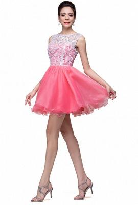 Lovely Sleeveless Lace Homecoming Dress UK Short_4