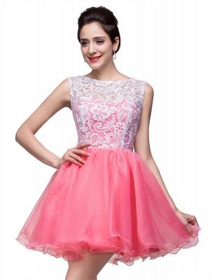 Lovely Sleeveless Lace Homecoming Dress UK Short_6