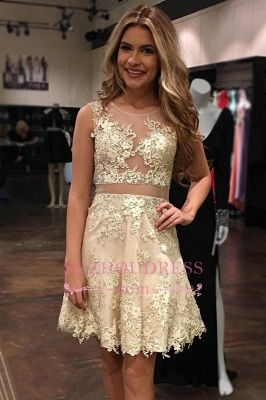 Appliques Tulle Gorgeous Sleeveless Scoop A-Line Homecoming Dress UK_1
