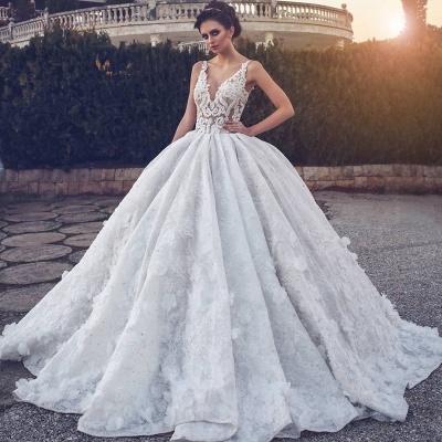 Elegant V-neck Lace Wedding Dress | Ball Gown Bridal Dress_5