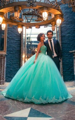 Elegant Sleeveless Tulle Ball Gown Wedding Dress Lace_1