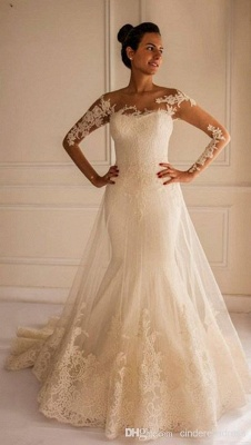 Chic Lace Appliques Sexy Mermaid Tulle Wedding Dress Court Train_1