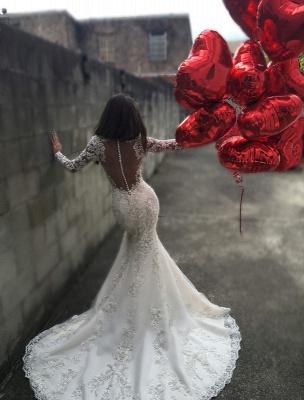 Elegant Long Sleeve Lace Wedding Dress Sexy Mermaid Zipper Button Back BA3741_2