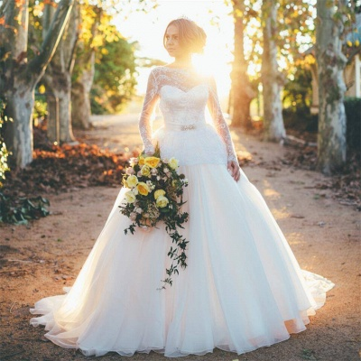 Gorgeous Long Sleeve Lace Wedding Dresses UK Princess Open Back_3