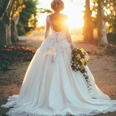 Gorgeous Long Sleeve Lace Wedding Dresses UK Princess Open Back_5