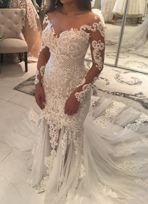 Long Sleeve Lace Wedding Dress | Sexy Mermaid Bridal Gowns On Sale_1