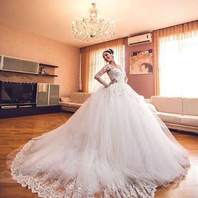 Delicate Lace Appliques Ball Gown Wedding Dress Long Sleeve Tulle_4