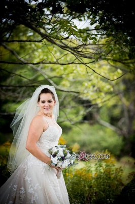 Lace Tulle Spaghetti-Strap Gorgeous Sweetheart Plus-Size Wedding Dress_3