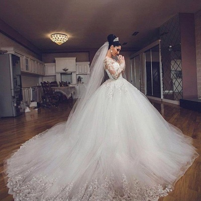 Delicate Lace Appliques Ball Gown Wedding Dress Long Sleeve Tulle_3