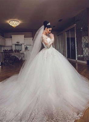 Delicate Lace Appliques Ball Gown Wedding Dress Long Sleeve Tulle_1