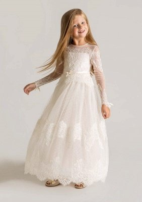 Modern Tulle Lace A-line Flower Girl Dress Long Sleeve_1