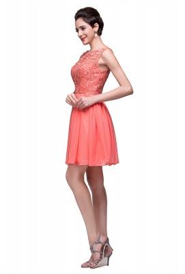 Lovely Lace Sleeveless Hoemcoming Dress UK Short Chiffon_4