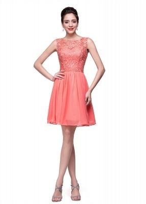 Lovely Lace Sleeveless Hoemcoming Dress UK Short Chiffon_2
