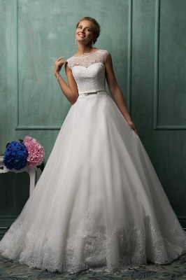 Elegant Illusion Cap Sleeve Tulle Wedding Dress With Lace Appliques_1
