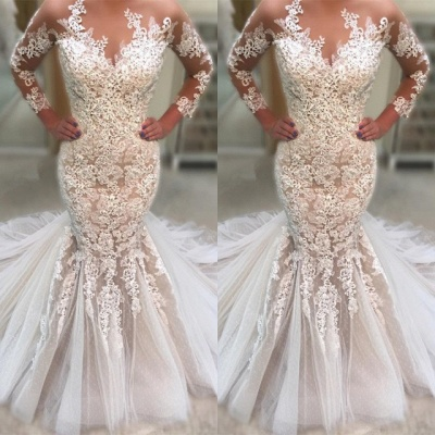 Gorgeous Long Sleeve 2019 Wedding Dress | Lace Sexy Mermaid Tulle Bridal Gowns_3