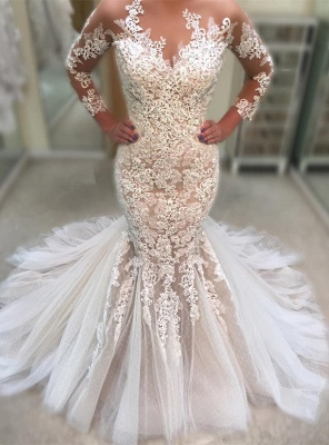 Gorgeous Long Sleeve 2019 Wedding Dress | Lace Sexy Mermaid Tulle Bridal Gowns_1